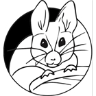 The Mindful Mouse